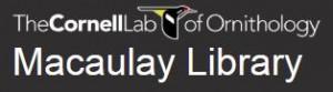 Macaulay-logo-300x83