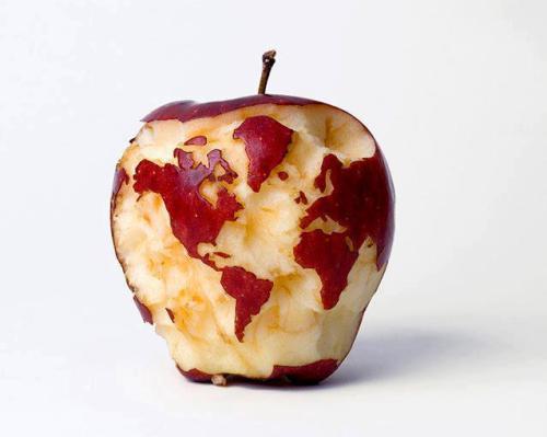 The world of apple