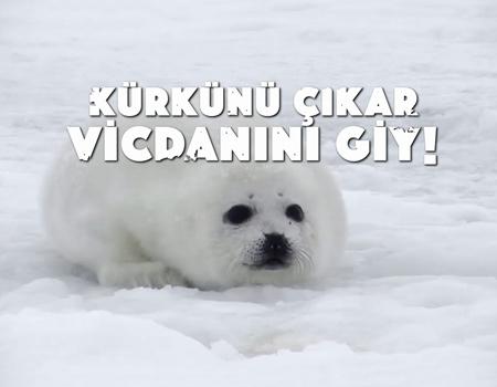 unlulerden-kurk-karsiti-kampanya-kurkunu-cikar-vicdanini-giy-0