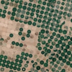 Center pivot irrigation is used throughout the Wadi As-Sirhan Basin of Saudi Arabia