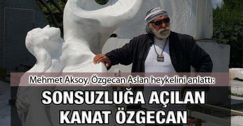 sonsuzluga_acilan_kanat_ozgecan_h72771_de9c9
