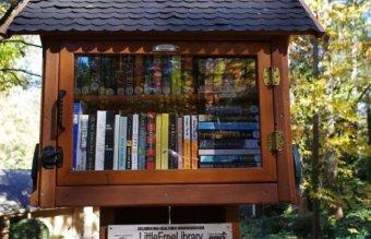 library-6357-sandy-springs-georgia.jpg__800x600_q85_crop_subject_location-551136