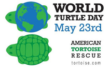 world_turtle_day_300px