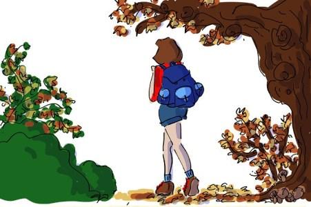 fall-walks-website