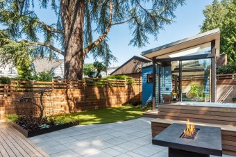 the-graceful-ovoid-arcs-through-the-site-and-the-wood-deck-concrete-pavers-and-a-custom-fabricated-steel-planter-all-curve-as-they-meet-the-line-explain-the-designers-the-shed-itself-tuc