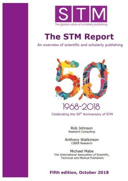 stm report