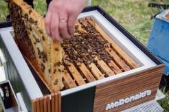 https___hypebeast.com_image_2019_05_mcdonalds-mchive-worlds-smallest-restaurant-bee-hive-2