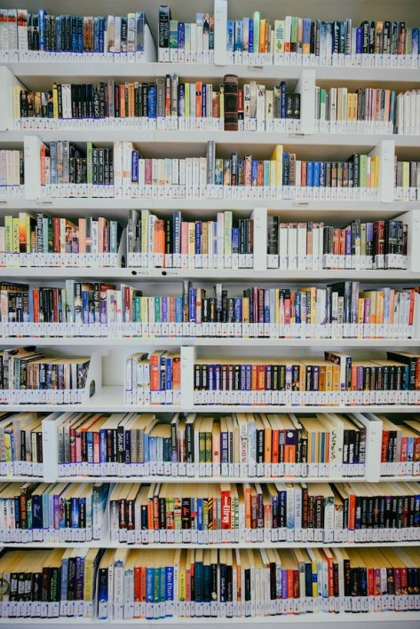 image-of-library-shelves