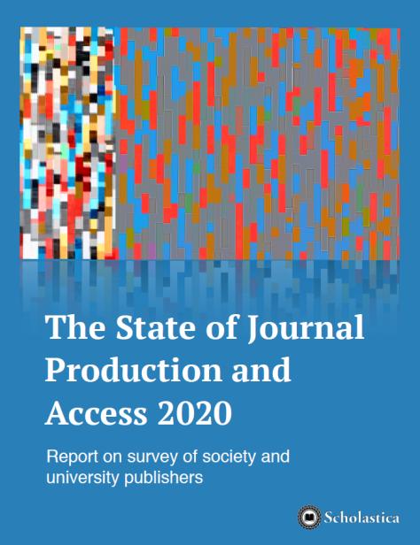 report on survey